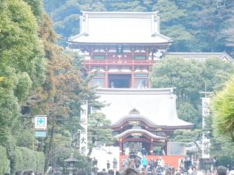 鎌倉鶴岡八幡宮